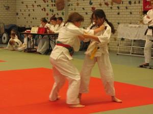 Geuldal Judotoernooi @ Sportcomplex Polfermolen | Valkenburg | Limburg | Netherlands