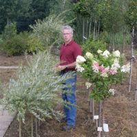 Geuskens Tuinplanten